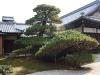 Japan-Koi-Einkaufsreise-kyoto10