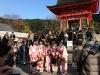 Japan-Koi-Einkaufsreise-kyoto14