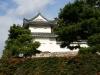 Japan-Koi-Einkaufsreise-kyoto15