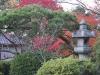 Japan-Koi-Einkaufsreise-kyoto19