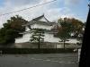 Japan-Koi-Einkaufsreise-kyoto2