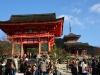 Japan-Koi-Einkaufsreise-kyoto20
